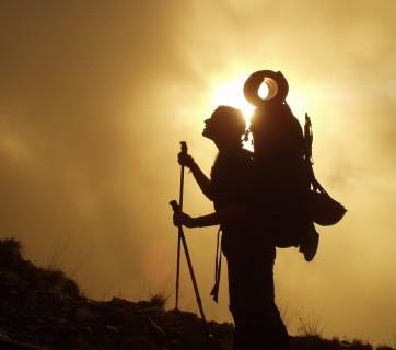 trekking-245311