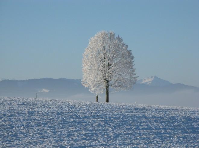winter-198447_1280