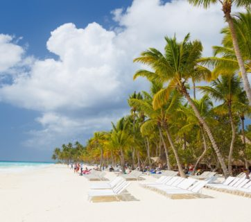 caribbean-beach-with-palms-14577744997I2