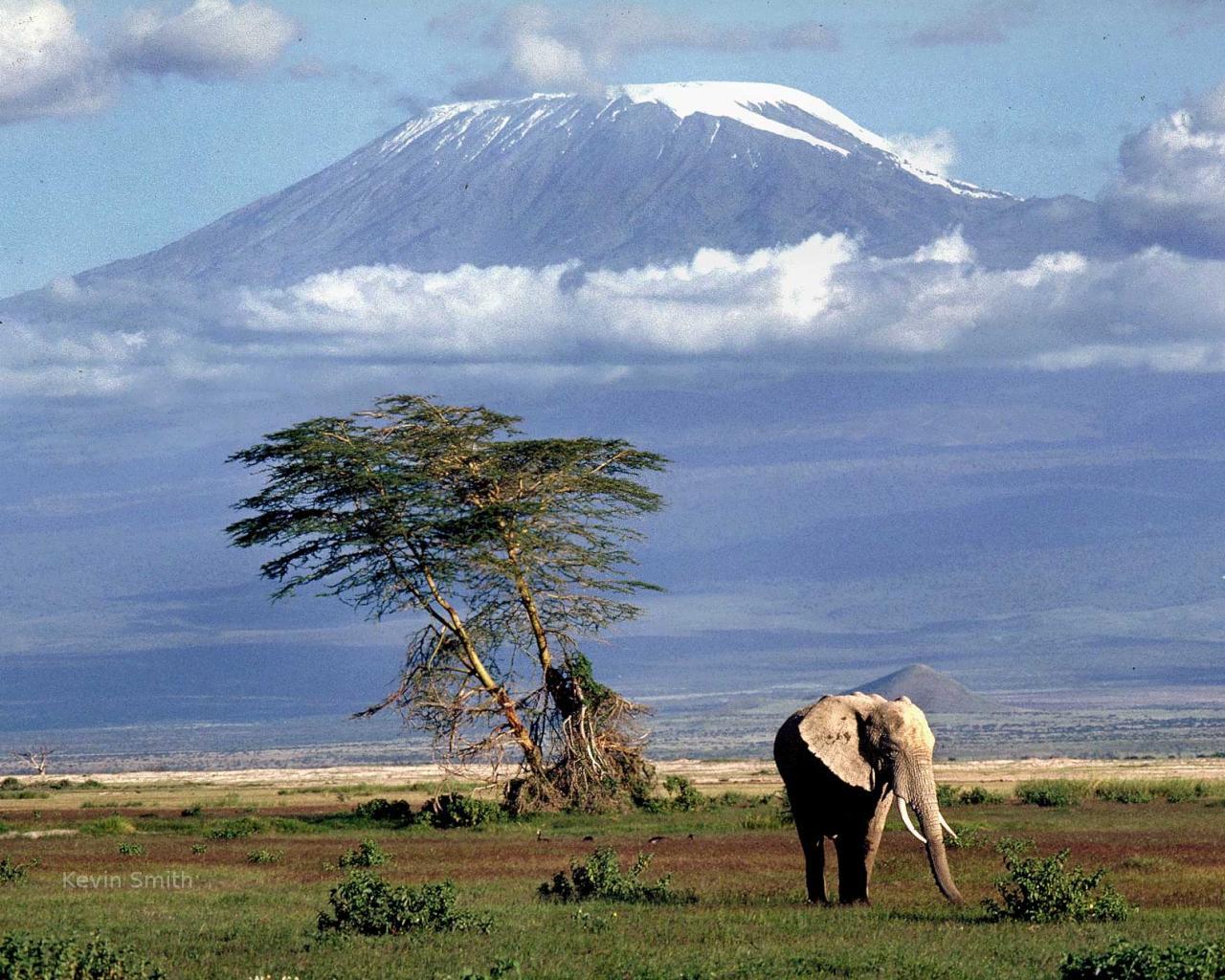mountain-kilimanjaro